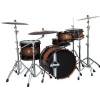Ddrum Paladin Walnut Player NB