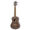 Ortega Rucoal concert ukulele