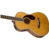 Fender PM-2 Standard Parlor Nat  akustická kytara