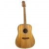 Randon RGI 01 acoustic guitar