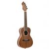 Ortega RUWN concert ukulele