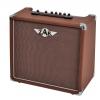 Zar 40R acoustic guitar amplifier, 40W