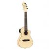 Ortega RUBO CE Horizon Concert Bamboo concert ukulele with pickup