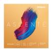 D′Addario A-310M 4/4 Ascente Medium